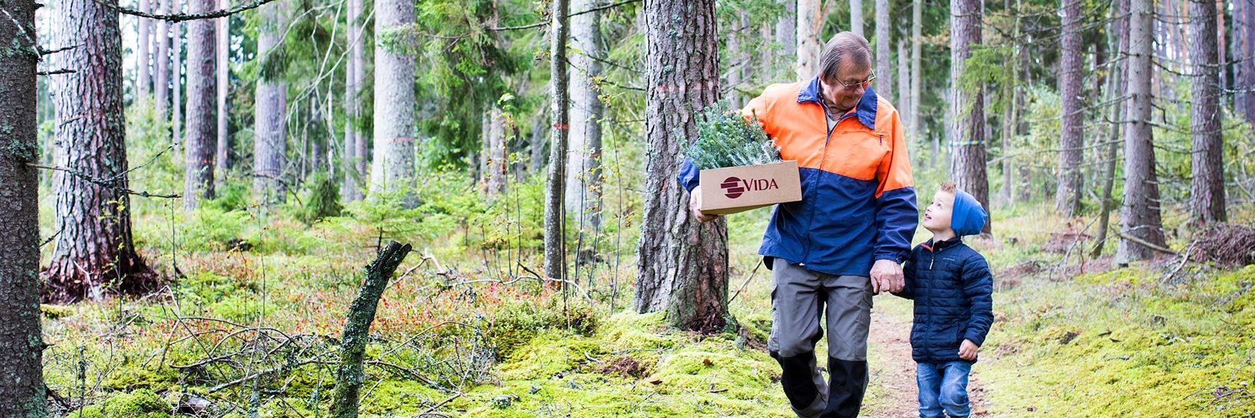 Skogsskötsel & rådgivning