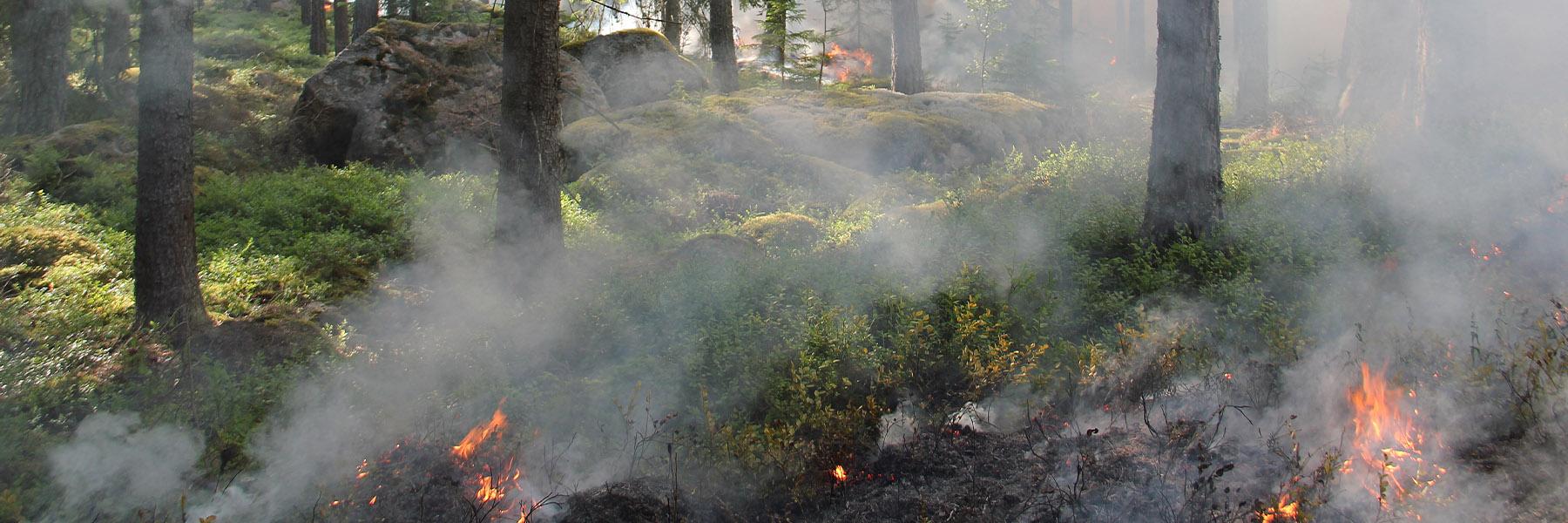 Systematiskt brandskyddsarbete
