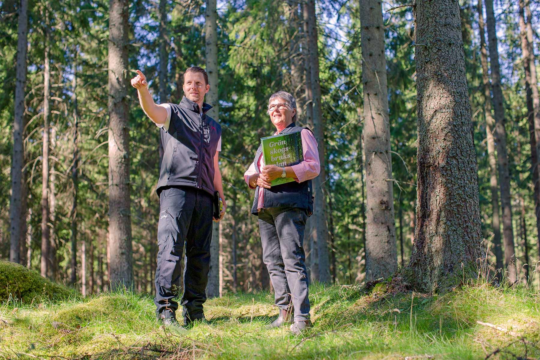 Säkra möten i en osäker tid - Låt oss ses i skogen